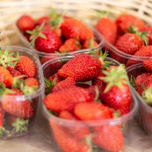 fruits légumes frais ty Laz Finistère épicerie